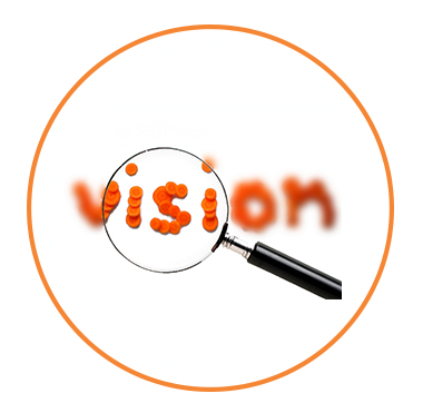 about-vision